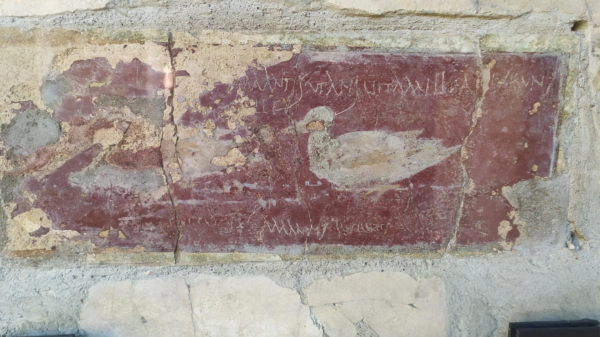 Tour guidato a Pompei