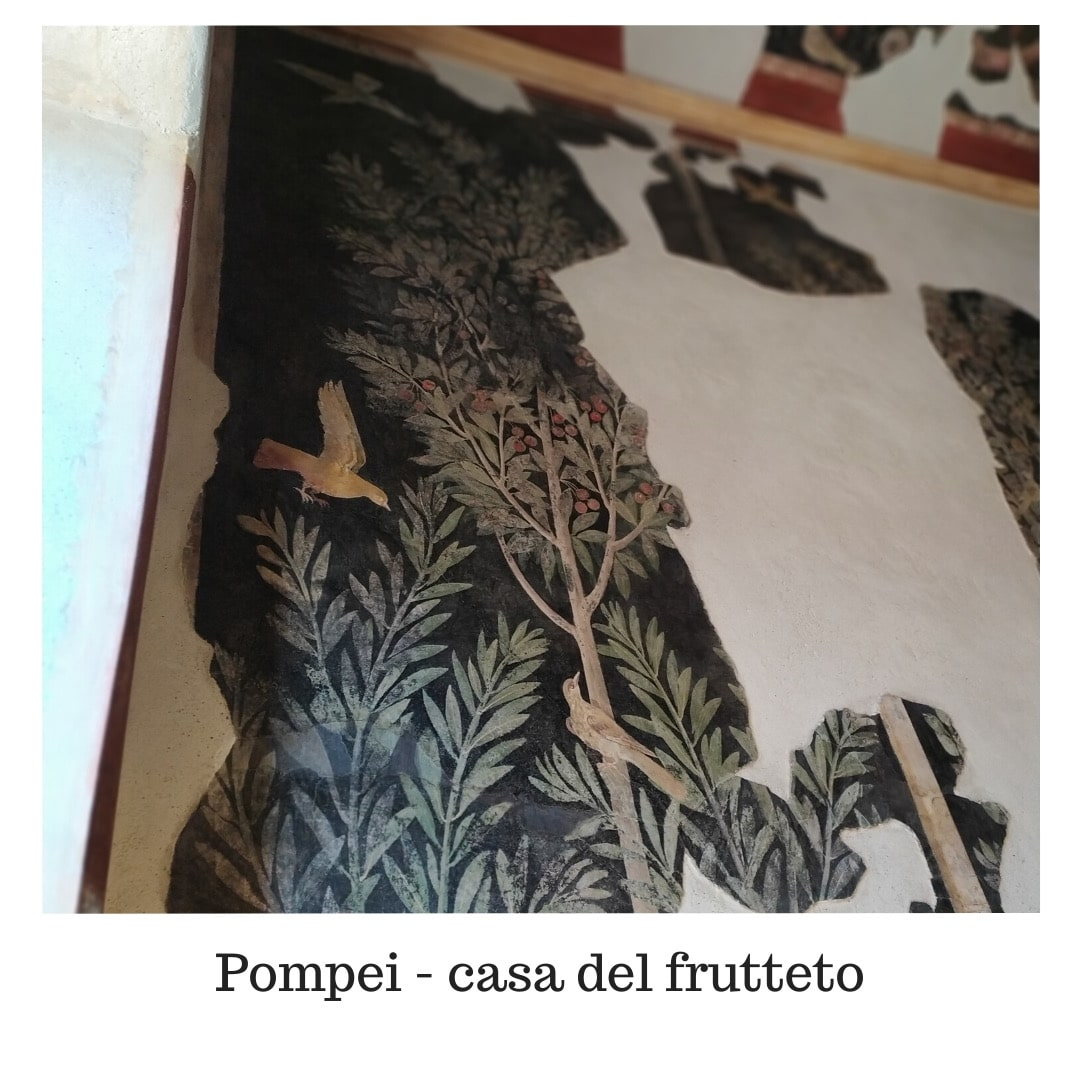 Pompei casa de frutteto